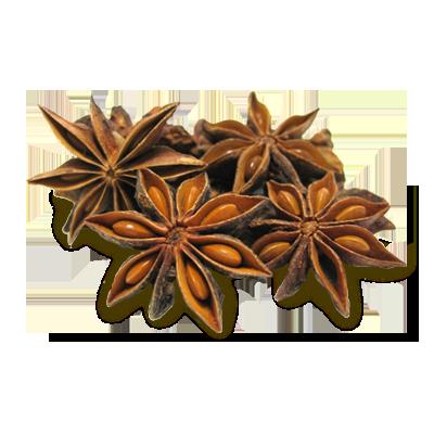 Star Aniseeds
